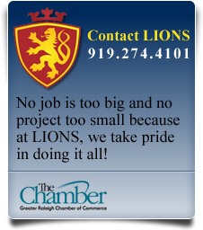 Contact Lions